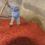 BUZIRAGUHINDWA fermentazione a secco