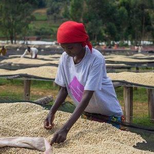BUZIRAGUHINDWA Burundi
