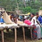 ETIOPIA Torea Village - messa in sacchi dei chicchi di caffè