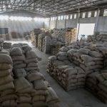 ETIOPIA Torea Village - sacchi di caffè pronti per l'esportazione