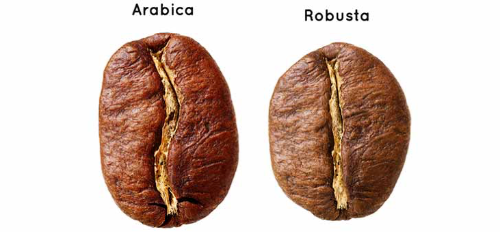 Arabica and Robusta toasted beans