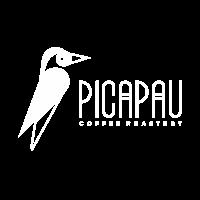 logo_W_picapau_600x600